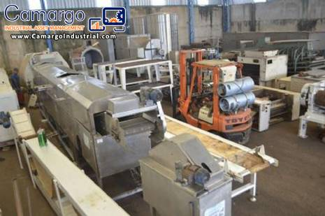 Continuous fryer for frying lines 350 kg MCI