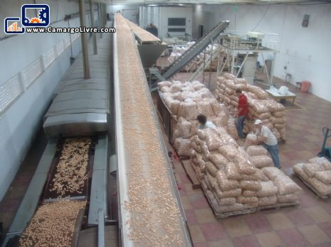 Automated line for production of cookies capacity 800 kg/h