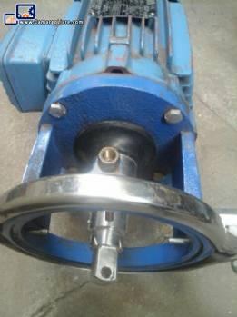 Water pump WEG