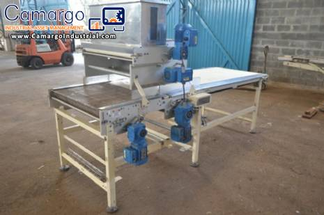 Machine to spray with grated coconut continuous lines